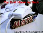 Первая мышь на Марсе!