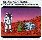 На Марсе есть неразумная жизнь...